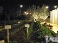Trattoria Terra Madre Alberobello (14)